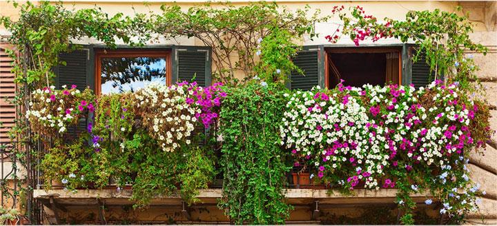 jardin en balcon